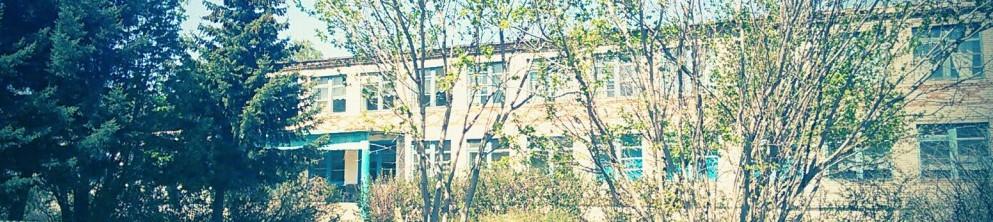 """Войковская СОШ, филиал МКОУ """"Самсоновская СОШ"""" Шипуновского района Алтайского края"""